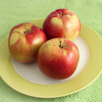 Apple Macintosh (Candle & Soap) Fragrance Oil | Bramble Berry® Soap Making Supplies