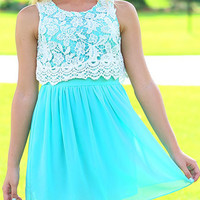 Blue Lace Panel Sleeveless Skater Dress