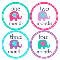 Baby Girl Monthly Baby Stickers Style #098