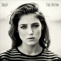 Vinyl Birdy - Fire Within (Vinyl)