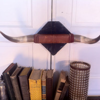 Vintage bull steer horns, rustic, southwestern decor- recovered in denim and leather