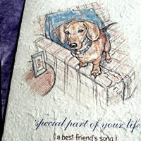 special part of your life ( a best friend's song) dog love