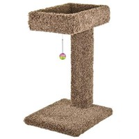 """Cat Ware Kitty Cactus Scratch Post & Bed w/Toy 24"""""""