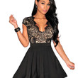 V-neck Lace Short Sleeve Mini Skater Dress