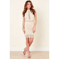 Toast Of The Town Champagne Lace Dress