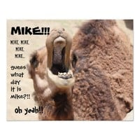 """Funny Camel """"hump day"""" Guess what day it is MIKE!"""