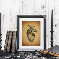 Anatomy Heart Print, Vintage Style Science Art Print, Cardiovascular Illustration, Halloween Decor