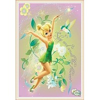 5D Diamond Painting Tinkerbell and the Hummingbird