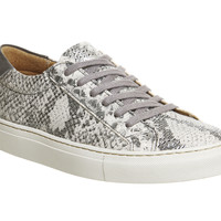 Office Axel Premium Lace Up Trainer Grey Snake Leather - Hers trainers