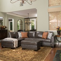 Farirra Contemporary Grey Leather Sectional Couch