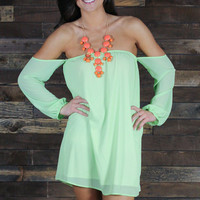 Pastel Passion Dress sleeveless off-shouder Sheer Mint green Fully lined also Lt pink & white