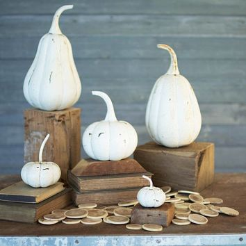 Recycled Iron Pumpkins (Set of 5) ~ Distressed White