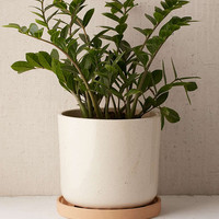 Parker Planter - Urban Outfitters