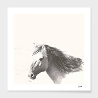«Brumby» Art Print by Suzanne Carter - Numbered Edition from $24.9   Curioos