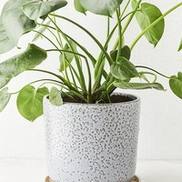 "Parker 10"" Planter + Drainage Tray Set 