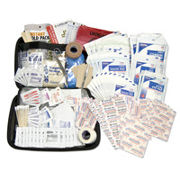 Lifeline Premium Hard Shell Foam First Aid Kit 208 Pieces