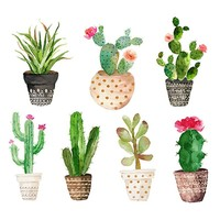 Succulent Green Plants Canvas Nordic Watercolor Art Print Poster Cactus Set Wall Paintings For Living Room  Decor No Frame