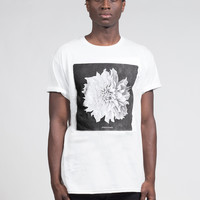 Petals of Prosperity Tee in White