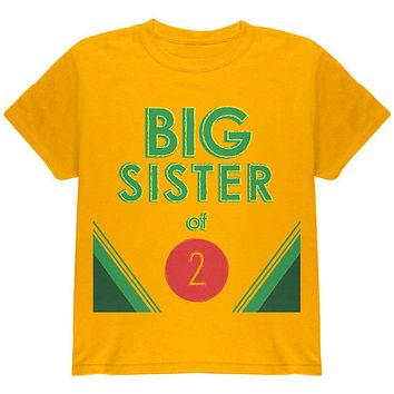Crayon Big Sister of 2 Youth T Shirt
