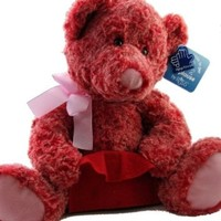 Applause By Russ Two Toned Red Pink Teddy Bear with Gift Card Holder
