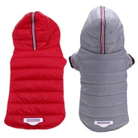 Dogs Chihuahua Warm Down Jacket