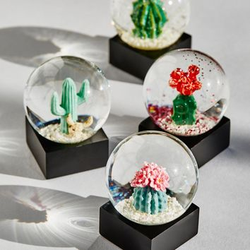 Free People Mini Cacti SnowGlobe (Set of 4)