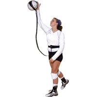 Tandem Volleyball Pal | DICK'S Sporting Goods