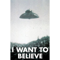 X-Files Domestic Poster