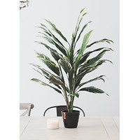 Fake Potted Cordyline Palm Floor House Plant - 40""