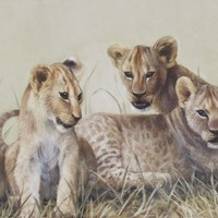 Cubs - African Lions - 16x40 Oil on canvas