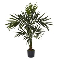 SheilaShrubs.com: 5' Kentia Silk Tree 5340 by Nearly Natural : Artificial Flowers & Plants