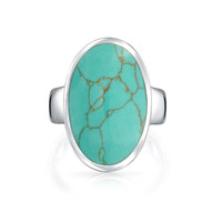 Bling Jewelry Southwest Vibe Ring