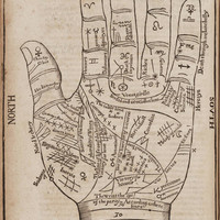 "Antique Print Hand ""Fortune Teller's Hand"" Steampunk Gothic Victorian Gypsy Circus Carnival"