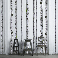 Trees & Branches Wall Decals