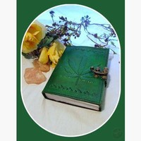 Green Leaf Latched Leather Journal