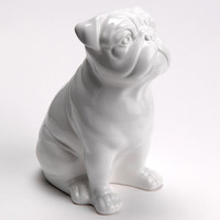 Statue of english bulldog, white ceramic, for decoration or collection
