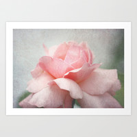 Rose the Majesty among the flowers Art Print by LoRo  Art & Pictures