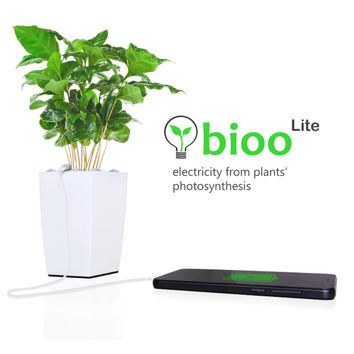 Bioo: Charge your Phone with the Power of a Plant