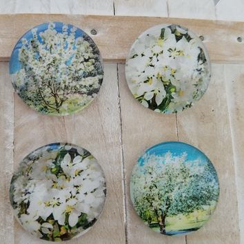 Shower gift favors floral magnets round glass magnets home decor gift