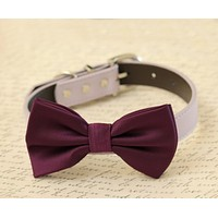 Eggplant dog bow tie collar - Dog collar , Wedding dog collar