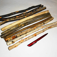 Twigs Branches. Decorative Twigs Branches. Harry Potter Magic Wands DIY. Wood Tree. Wooden Tree Sticks. Dry Wood Branch.