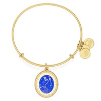Capricorn Celestial Wheel Charm Bangle