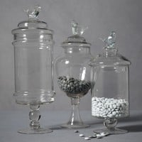 Glass Swallow Confection Jars in  the SHOP Decor Decorating at BHLDN