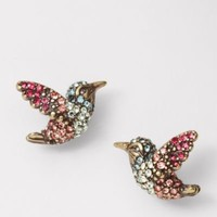 FOSSIL® Jewelry Earrings:Womens Hummingbird Studs JA5132