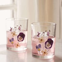 Pressed Floral Glasses Set - Urban Outfitters