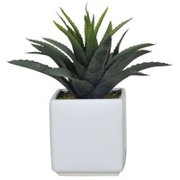 House of Silk Flowers Artificial Green Star Succulent in White Cube Vase