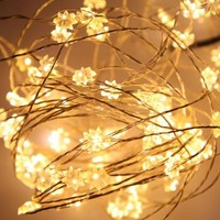 10m/33Ft 100 LED Eight-pointed Warm White Copper Wire Fairy String Light Party Xmas Lighting, Includes Power Adapter