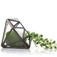 Modern Artistic Clear Glass Geometric Terrarium Succulent Fern Moss Microscape Eight-surfaces Diamond Glass Bonsai Flower Pot