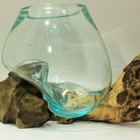 Hand blown Glass and Driftwood Terrarium or Fish Bowl