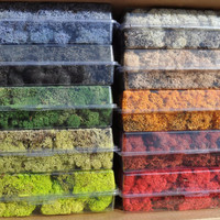NEW Colors Reindeer moss-2 oz bag in your color choice-Deer foot Moss-Black-Sienna-Mango-Light blue and more 2 Oz. Bag Preserved Lichens